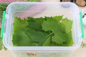Малосольные огурцы в виноградных листьях